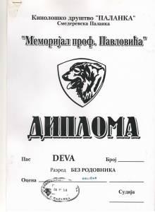 Déva-2010.03.28. Smederevska Palanka - Izvorni
