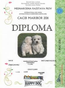 Déva-2011.05.07. Maribor-Diploma