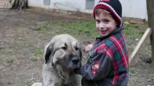 Kara Baska 2,5 évesen Leventével