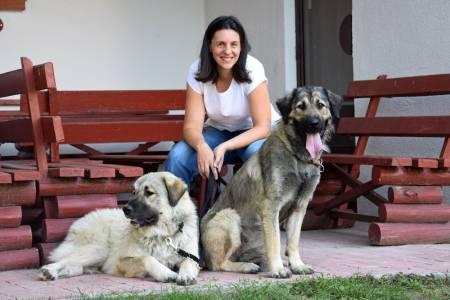 Szentkúton A Kutyákkal